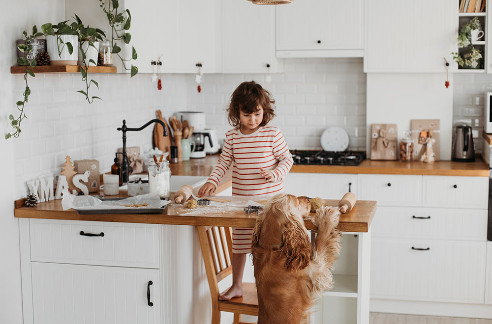 Property Improve Kitchen Designers Edinburgh Little Boy Baking with Dog